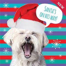 westie dog cards in cards u0026 stationery ebay