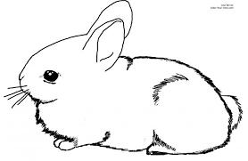 incredible baby bunny coloring pages regard encourage ba az
