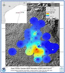 Uncw Map Scientists Investigate Mysterious Coral Mortality Event At East