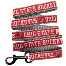 ohio state ribbon ohio state buckeyes athletic pets
