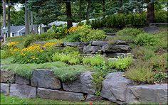 rocks landscaping rock gardens cording landscape design