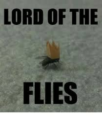 Lord Of The Meme - 25 best memes about lord of the lord of the memes