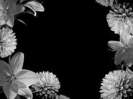 White And Black Wallpaper by Black Wallpaper Desktop 3378 Hd Wallpapers Opengavel Com
