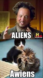 Cat Alien Meme - a true batcat album on imgur