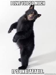 Love You So Much Meme - i love you so much it s unbearable super bear d make a meme