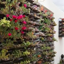 80 wall gardens vertical wall gardens garden gardening