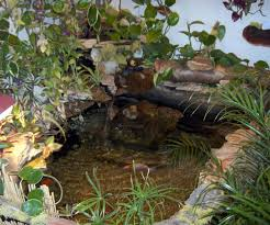 stupendous x mm wooden koi pond mm a wooden pond kit from garden