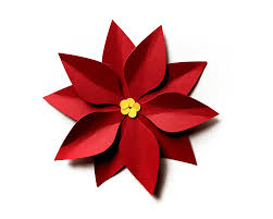 christmas poinsettia svg file template designed by geeks