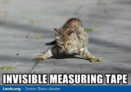 Invisible Cat Memes - invisible measuring tape cat meme cat planet cat planet