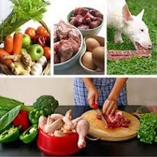 23 best raw food diet for pets images on pinterest raw food diet