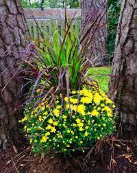 15 best lowe s garden center displays images on garden