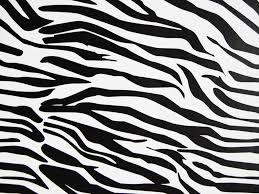 rwraps zebra vinyl wrap animal print car wrap film