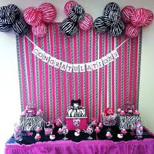 leopard print party supplies hot pink animal print party supplies best cakes images on