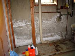 what to do about efflorescence or stained concrete basement walls