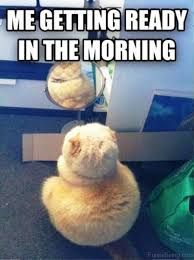Funny Morning Memes - 70 funniest good morning memes