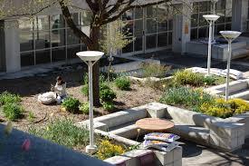 library garden group blog