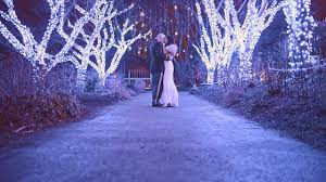 Botanical Gardens Christmas Lights by Sara U0026 Jimmy U0027s Winter Wedding At Meadowlark Botanical Gardens In