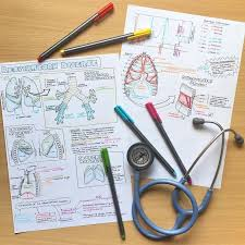 College Anatomy And Physiology Notes The 25 Best Physiology Ideas On Pinterest Human Anatomy And