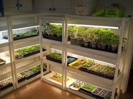 shop light for growing plants cheap snap together shelves and shop lights make for a reasonable