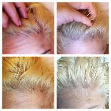 gino for hair 39 photos u0026 27 reviews hair salons 350 west