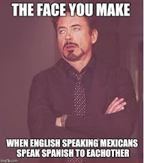 Speak Spanish Meme - the face you make when english speaking mexicans speak spanish to