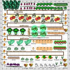 Garden Plot Layout Tips For Planning A Vegetable Garden Plot Garden Ideas Center