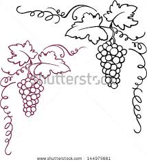 vine and berries clip free vector for free about 3