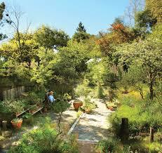 84 best california natives images garden design with archaic landscape planning masterplan austen