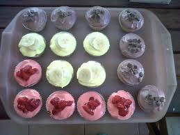 cupcakes dailyamusebouche