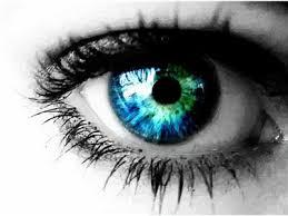 Reggie Banister Third Eye Cinema 3 11 12 With Reggie Bannister 03 11 By