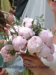 wedding flowers peonies guide to seasonal wedding flowers
