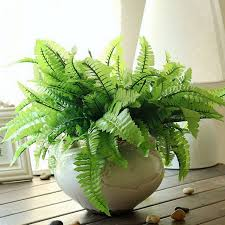 Home Decor Artificial Plants Home Decor Plastic Imitation Fern Grass 7 Fork Green Grass