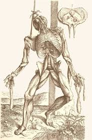 He Made Accurate Drawings Of The Human Anatomy Andreas Vesalius Anatomy In The Age Of Enlightenment