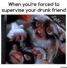 hilarious meme compilation friday june 17