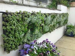 examples of walls and stonework from landpoint gardens garden