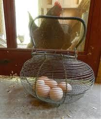 egg baskets egg baskets hencam