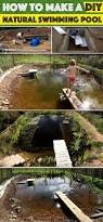 how to make a diy natural swimming pool u2013 cute diy projects