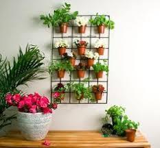 Ebay Vertical Garden - con un simple elástico de cama reciclar pinterest hanging