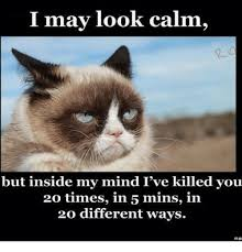 Calm Meme - may look calm i but inside my mind i ve killed you 20 times in 5
