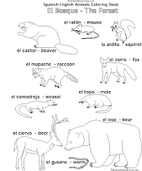 Forest Animals In Spanish Enchantedlearning Com Forest Animals Coloring Pages
