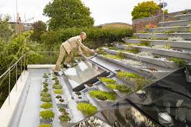 pyramid rooftop garden creates green oasis for london home curbed