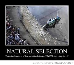 Car Wreck Meme - funny natural selection nascar race car crash pics jpg 488 427