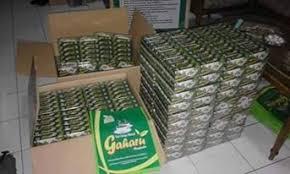 Teh Gaharu agen teh gaharu 16 manfaat teh gaharu masindo