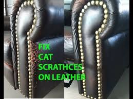 Repair Scratches On Leather Sofa Best One I Found How To Repair Cat Scratches On Leather