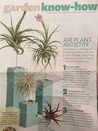 Plant For Desk 100 Best Plant For Desk Three Desk Plants For Your