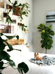 Jungle Nursery Wall Decor Jungle Bedroom Decor Medium Size Of Bedroom Ideas Safari Nursery