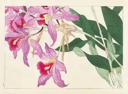 Japanese Flower Artwork - 73 best конан танигами images on pinterest japanese art