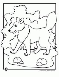 coloring page of wolf wolf coloring pages animal jr