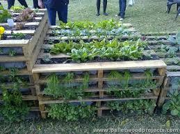 Wood Pallet Garden Ideas Wood Pallet Projects For Garden Pallet Wood Projects