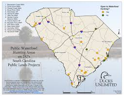 Waterfowl Migration Map Public Hunting On Du Projects In South Carolina